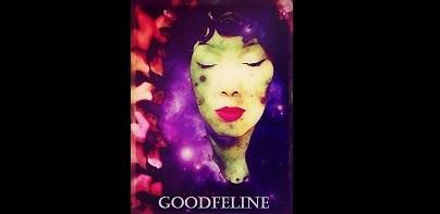 GoodFeline